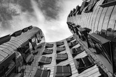 """Deyana Tschirch """"Gehrys Blick hoch"""""""