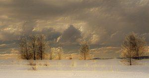 """""""Winter-Impressionen"""", Ernie Bellmann"""